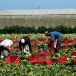 lavoratori migranti siracusapress