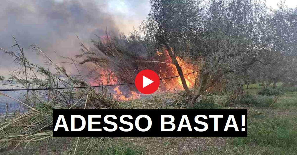 daily incendi siracusapress